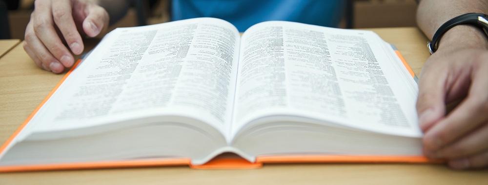 słownik, panorama