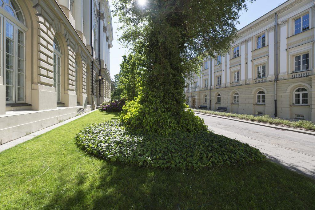 University gardens   University of Warsaw