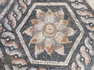 New Mosaic Discovered in Alexandria_photo R.Kucharczyk-PCMA UW