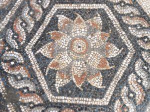 New Mosaic Discovered in Alexandria_photo R.Kucharczyk-PCMA UW