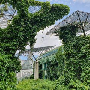 University of Warsaw Library, gardens. Photo O. Laska